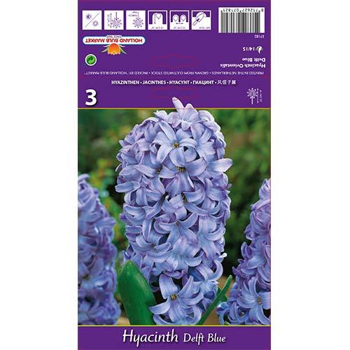 Hyacint Delft Blue изображение 1 артикул 67359