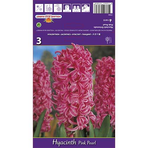 Hyacint Pink Pearl изображение 1 артикул 67365