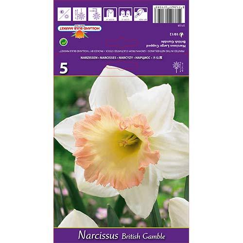 Narcis British Gamble изображение 1 артикул 67642