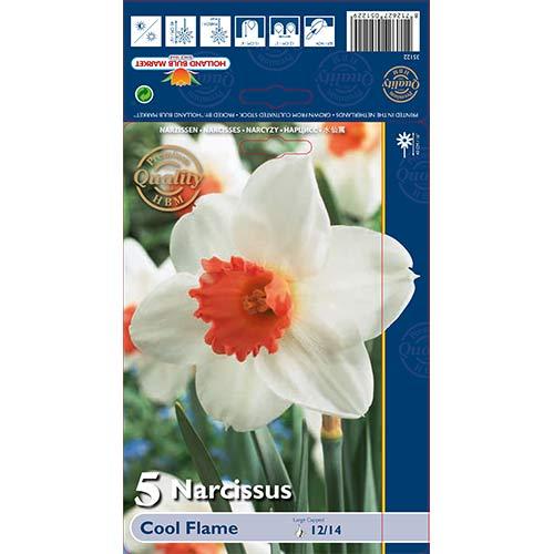 Narcis Cool Flame изображение 1 артикул 67650