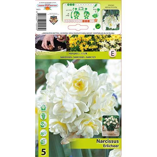 Narcis Erlicheer изображение 1 артикул 70285