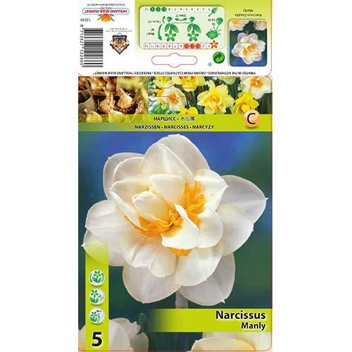 Narcis Manly изображение 1 артикул 68070