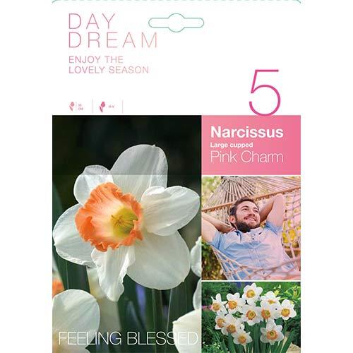Narcis Pink Charm изображение 1 артикул 67426