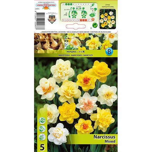 Narcis plnokvetý, mix