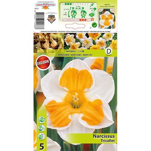 Narcis Tricollet изображение 1 артикул 67436
