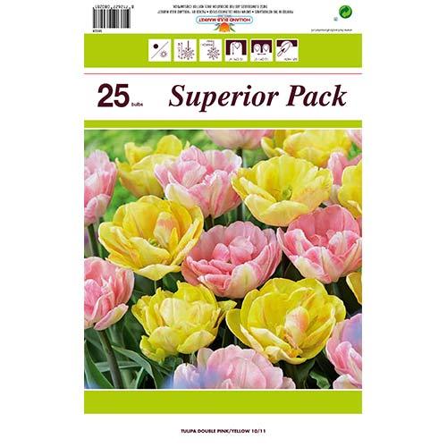 Super ponuka! Sada tulipánov z 2 odrôd изображение 1 артикул 70316