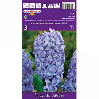 Hyacint Delft Blue изображение 7