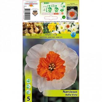 Narcis Bella Vista изображение 5