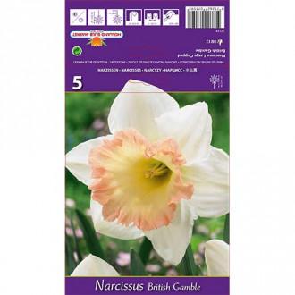 Narcis British Gamble изображение 8