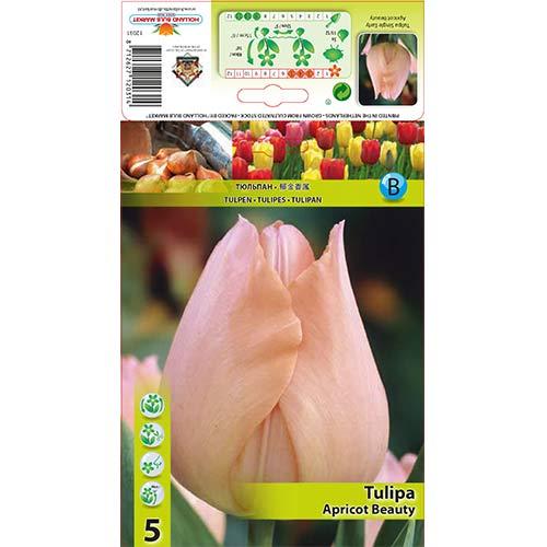 Tulipán Apricot Beauty изображение 1 артикул 67864