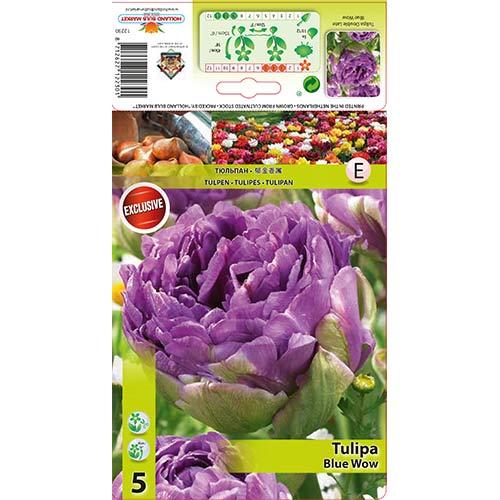 Tulipán Blue Wow изображение 1 артикул 67701
