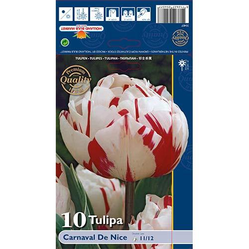 Tulipán Carnaval de Nice изображение 1 артикул 67738