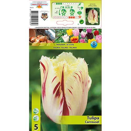 Tulipán Carrousel изображение 1 артикул 70298