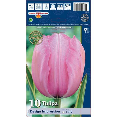 Tulipán Design Impression изображение 1 артикул 67728