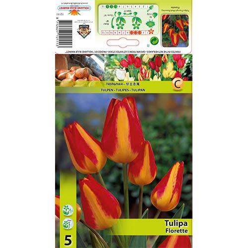 Tulipán Florette изображение 1 артикул 70305