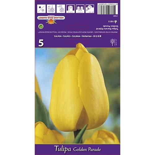 Tulipán Golden Parade изображение 1 артикул 67715