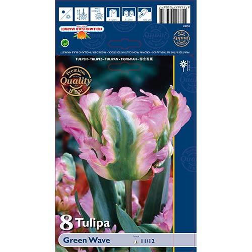 Tulipán Green Wave изображение 1 артикул 67720