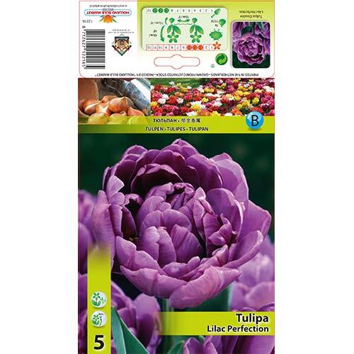 Tulipán Lilac Perfection изображение 1 артикул 67460