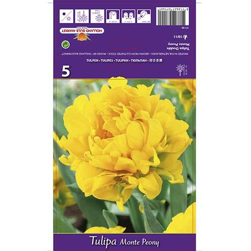 Tulipán Monte Peony изображение 1 артикул 67775