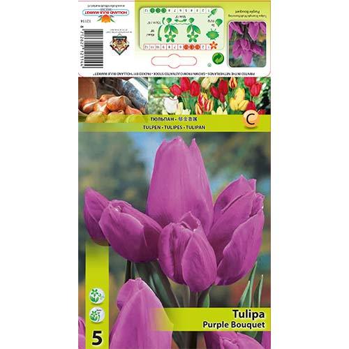 Tulipán Purple Bouquet изображение 1 артикул 67809