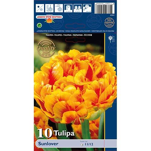 Tulipán Sunlover изображение 1 артикул 68042